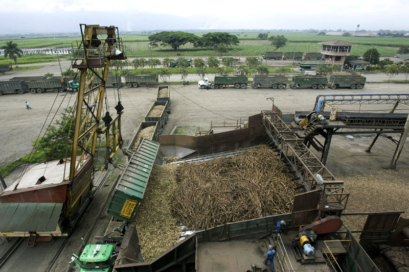 Houston Chronicle, sugar cane factory, Palmira, Colombia