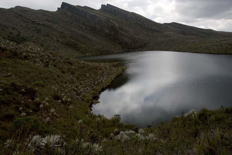The Nature Conservancy, Siecha lagoon, Cundinamarca, Colombia