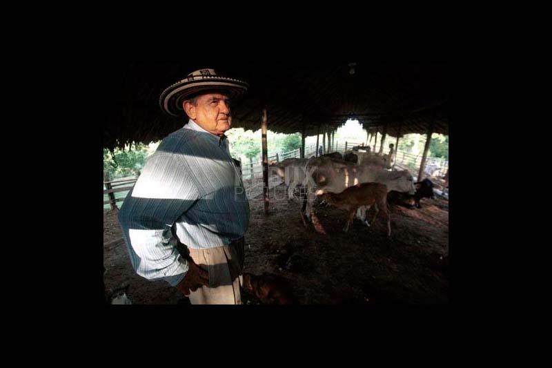 The New York Times, cattle rancher, Montería, Colombia