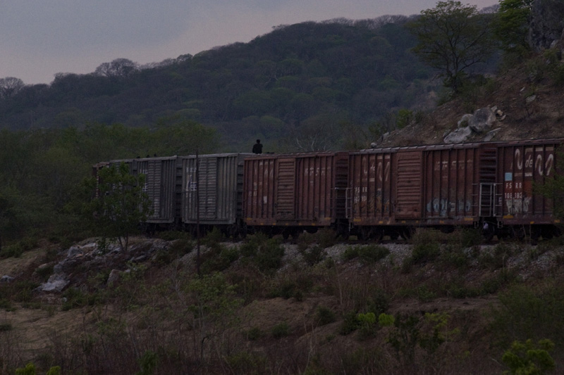 An illegal immigrant rides a train towards the north of Mexico on hopes to reach the USA. Chiapas