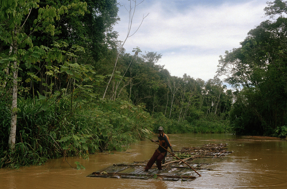 A logger bringing Abarco, colombian mahogany, wood planks down the Truando river, Colombia, 2007.